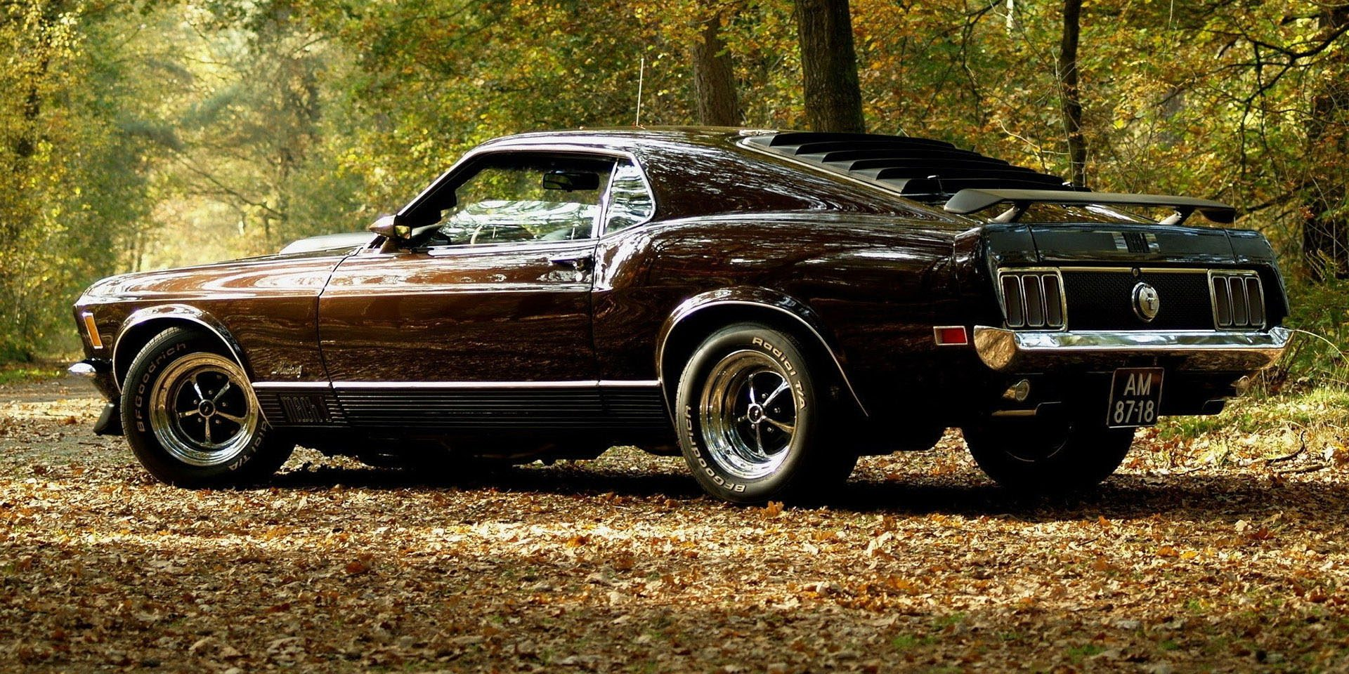 Can You Name These Iconic Muscle Cars
